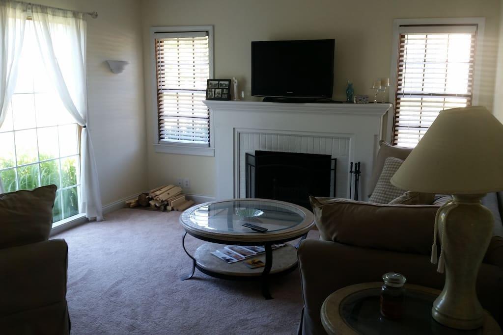 Large living room, fireplace, natural lighting
