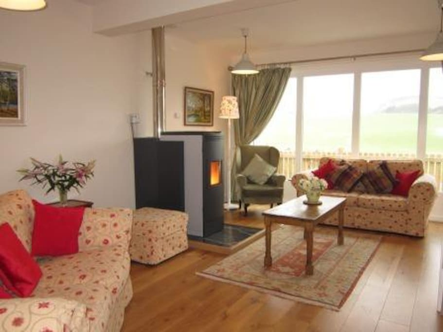 Open plan sitting room with biomass boiler
