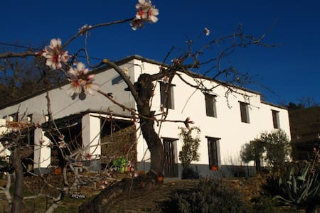 Rural stay just outside Bérchules. - Granada