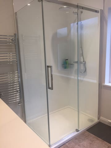 Guest bathroom with luxurious double shower
