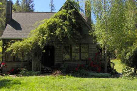 Rent a Private Park  - Willits