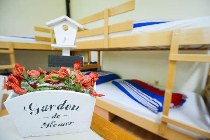 Hostel Jedro Belgrade Bed in Room 7