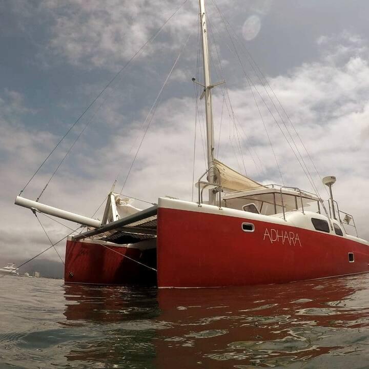 Nosso veleiro está à sua disposição