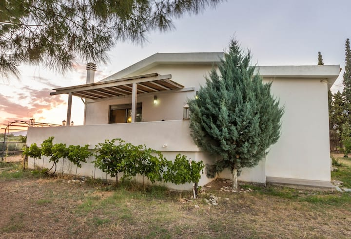 Family House, Eretria