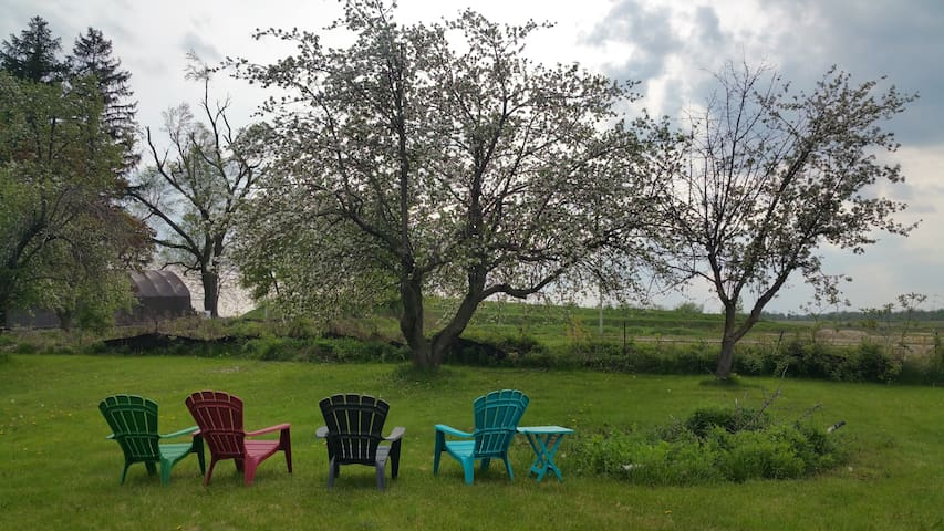 Country Living in the City of Hamilton
