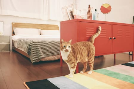 LitterBox1\JoyfulRoom漿房\MRT Shilin士林站 - Shilin District - Íbúð