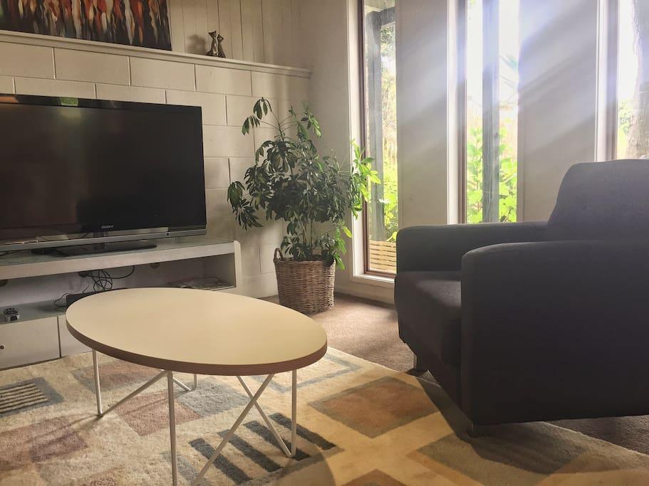 Living room with plenty sunshine