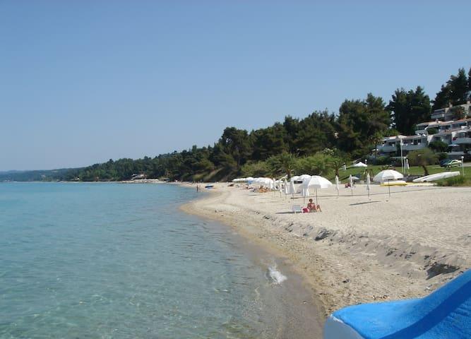 On the best private beach - Kriopigi - Ev