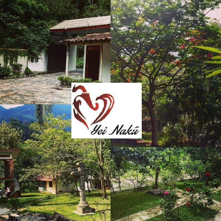 cabañas y apartamentos dentro del hotel Yei Nakú