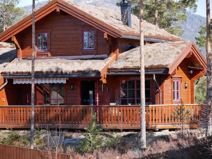 Vrådal Panorama-Cottage with canoe -Ski/Swimming..
