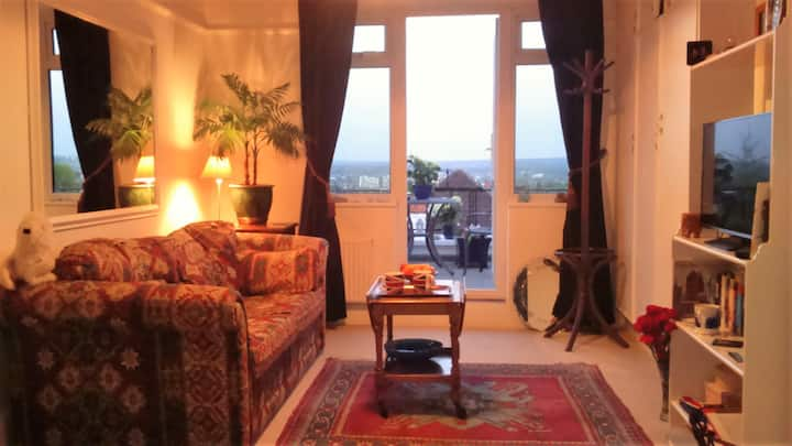A suite of rooms in London, with amazing views !!!