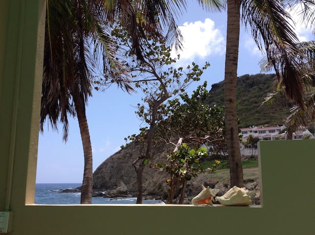 Oceanfront apartment Point Blanche - Upper Prince's Quarter - Daire