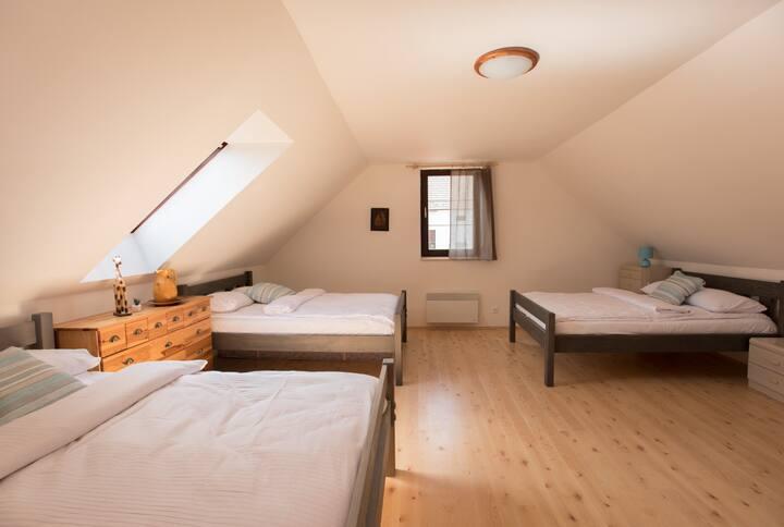 Rooms south Bohemia,Ubytovaní Staré Hutě-Rodina