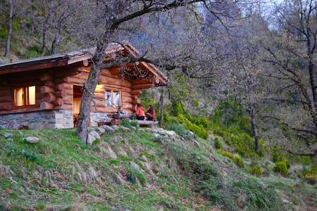 La Cabanya dels troncs del Vilaró