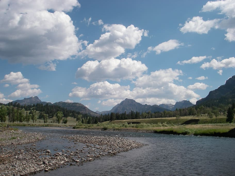 Lamar & Soda Butte Valley - great fishing and animal viewing nearby