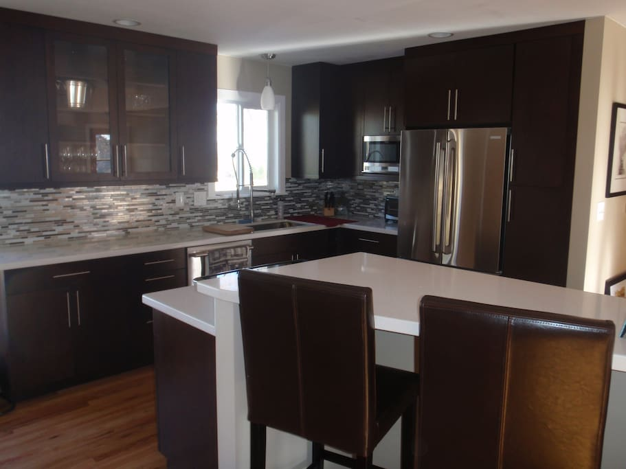 Professional level modern, open kitchen with induction range