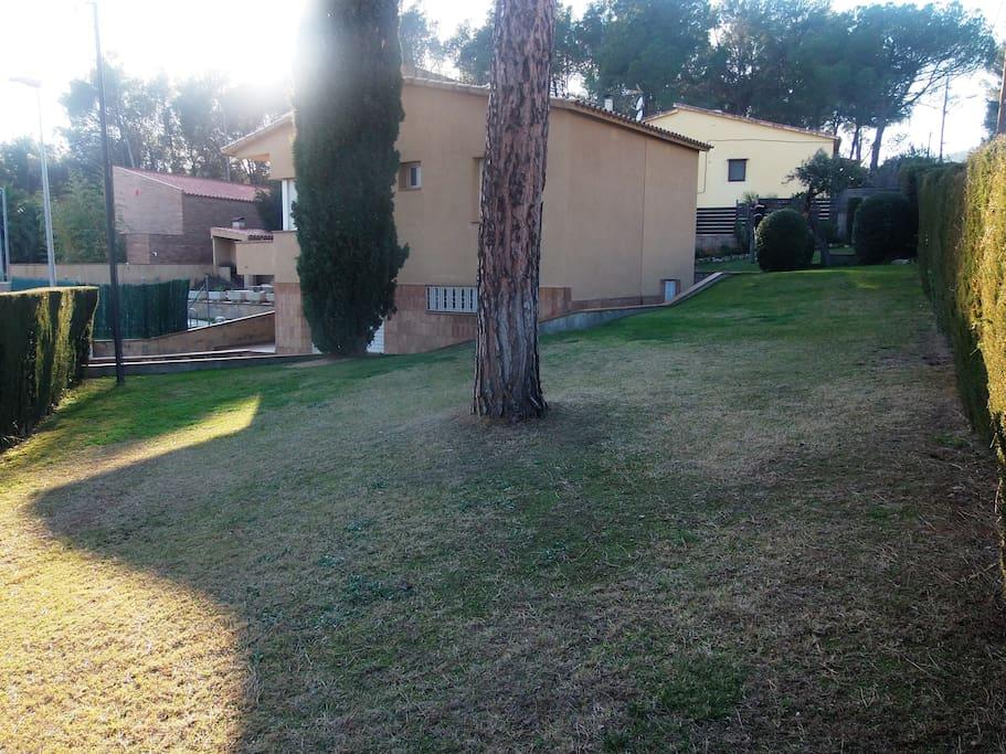 Zona verde alrededor de la casa.