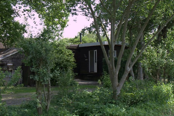 vakantiehuis, Het zwarte schaapje - Zuidwolde - Srub
