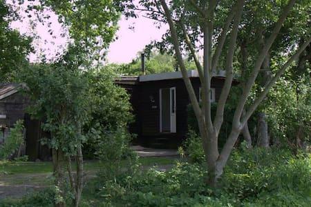vakantiehuis, Het zwarte schaapje - Zuidwolde