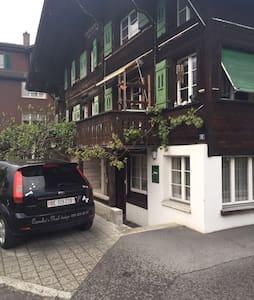 Sonniges und gemütliches Studio - Unterseen - Vindsvåning