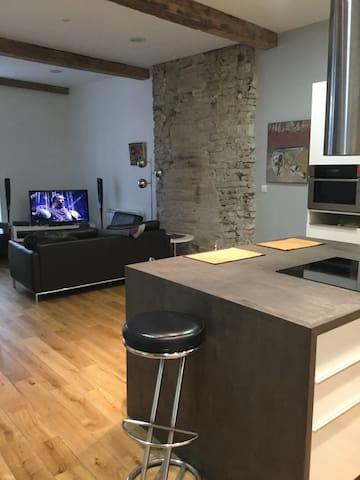 Bel appart 100m2 Haut de Gamme hyper centre - Grenoble - Apartment