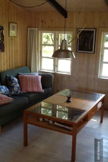 the cozy comfort zone (TV-area)
