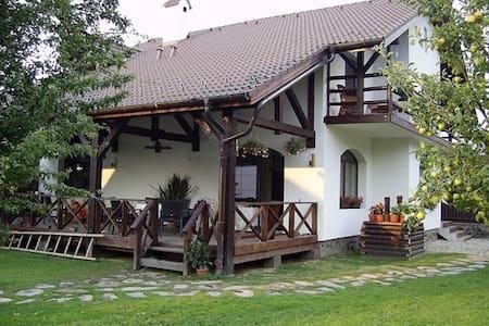 Cozy guest house on Transfagarasan - Cârţişoara