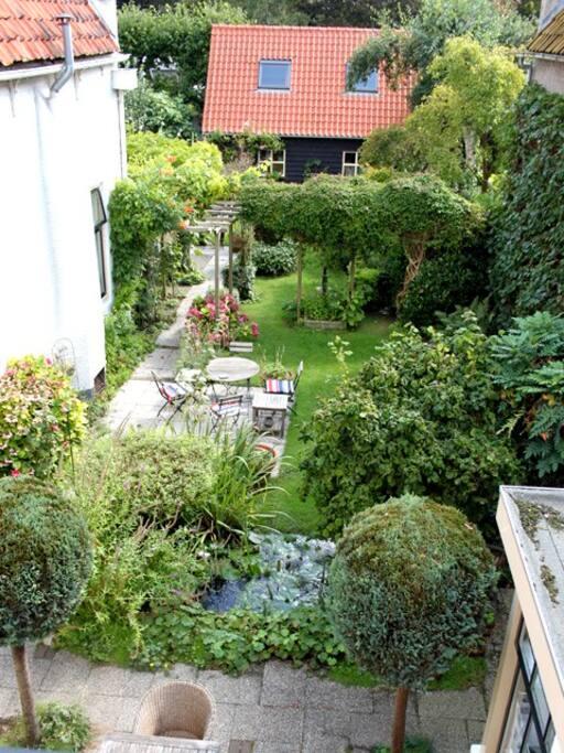 Part of our spacious town garden
