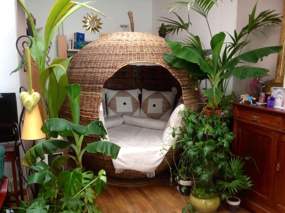 Nuits insolites dans le cocon ! Fermez le rideau et vivez des nuits douces, paisibles et ressourçantes dans le lit rond...