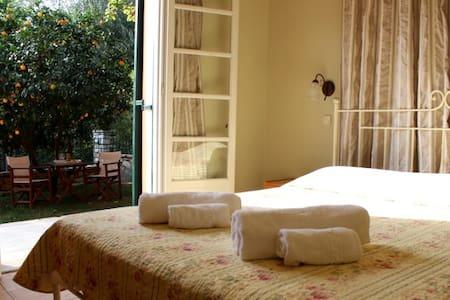 Villa Anthoussa in Paleokastritsa. - Palaiokastritsa - Apartment
