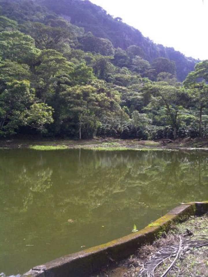 Charming Coffee Plantation and Tour-Bkfast incl.