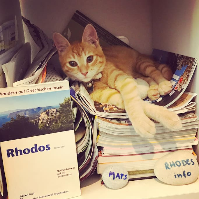 "Our kitty ""Symi"" will give you all the info abou Rhodes!"