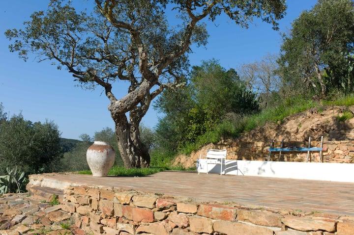 Casa Sobreiros: Amazing House & View