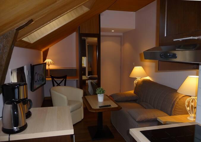 F2 Hypercentre, calme, climatisé - Tours - Apartament