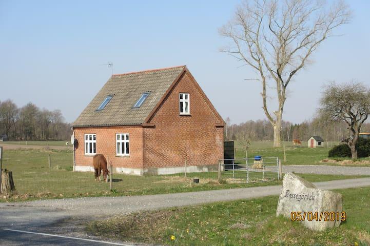 Hus på landet, kun 12 km fra Djurs Sommerland.