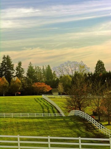 Countryside Estate King Room - Brush Prairie
