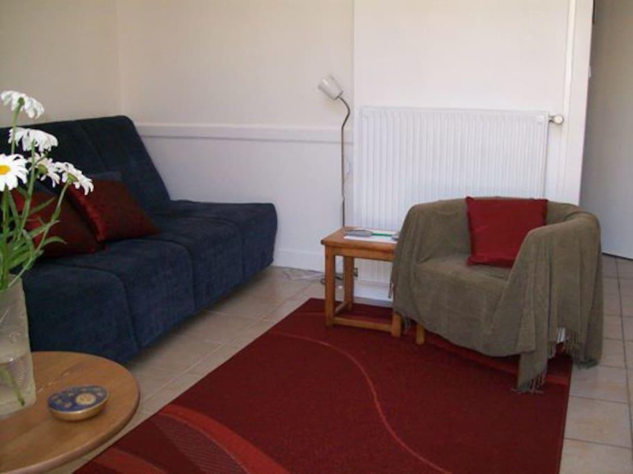 Apt.1: Living area