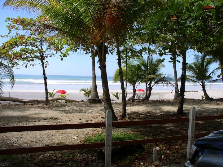 Playa Carmens best