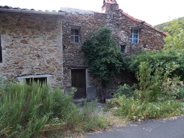 Country cottage for 6-8 people in Cevennes Hills - Le Vigan - Hus
