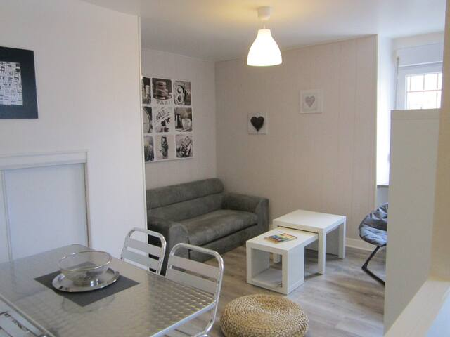LAZARE HOME BREAK CITY ANGERS - Angers - Apartemen