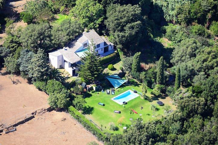 Villa, jardin, piscine vue sur mer  - Brando - Casa