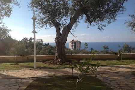 Dhermi-Olive Terrace App For Rent - Drymades - Apartment - 0