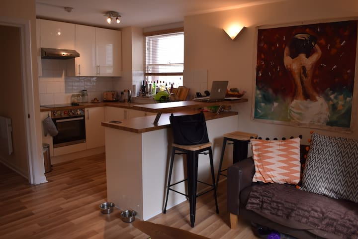 Bright and Modern Apartment in Stockbridge - Edinburgh - Apartment