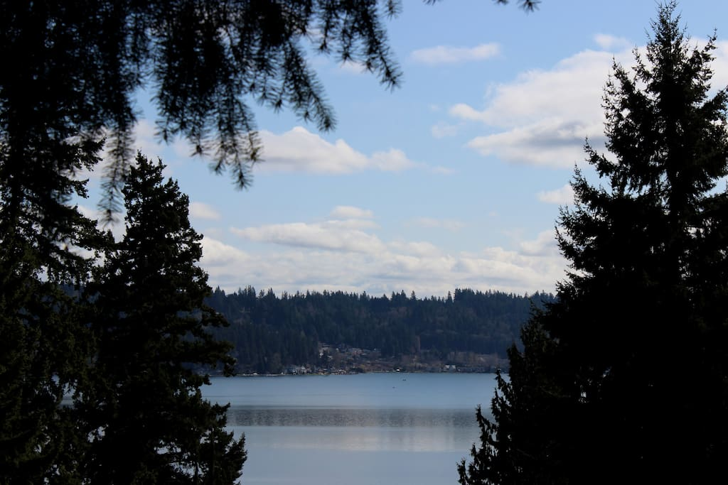 View of Lake Sammamish..only one block away