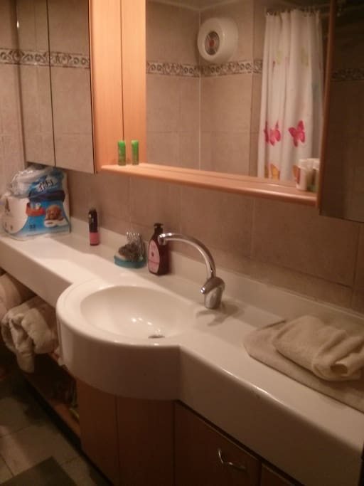 This is the bathroom. There is a bathtub with showerhead.