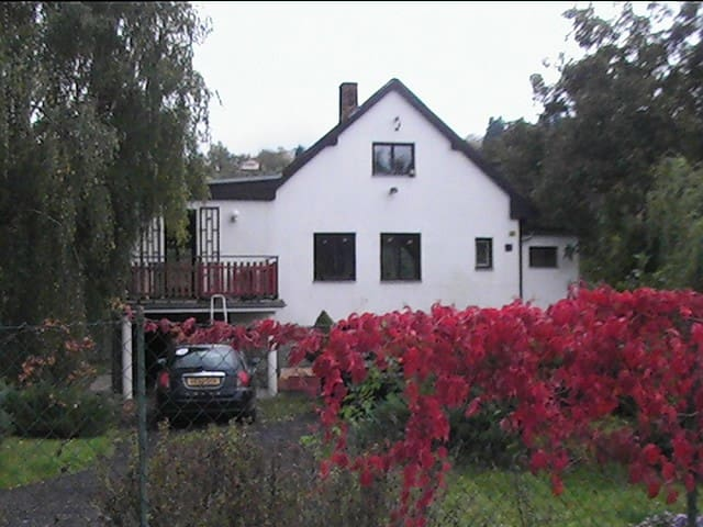 Beautiful Cottage By The River - Zadní Třebaň - Haus