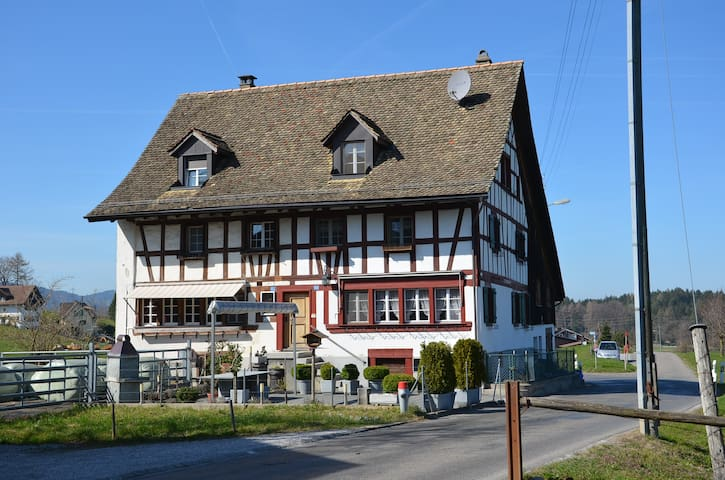 Apartment - Horgenberg - Condominium