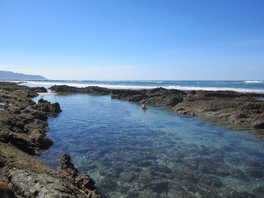 tidal pools are very close to the house and great for snorkeling.
