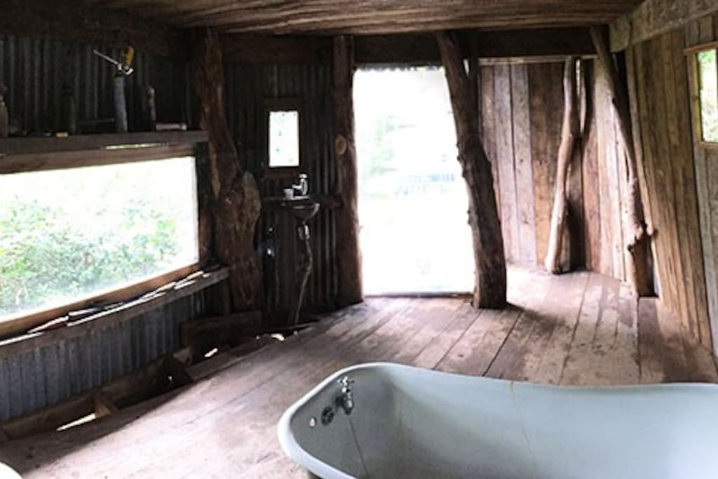 Bathroom in the woods