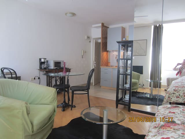 Apartment GS12a